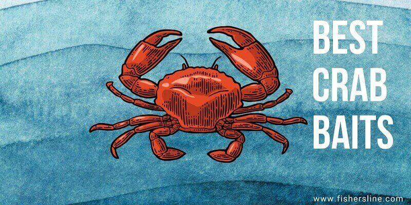 Best-Crab-Baits