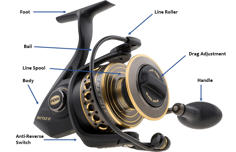 Anatomy of a spinning reel