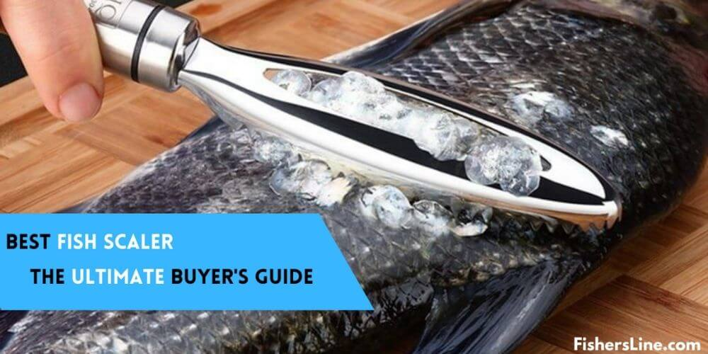 Best FIsh Scalers- Ultimate Buyer's Guide