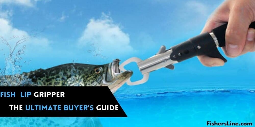 Best Fish Lip Gripper- The Ultimate Buyer's Guide