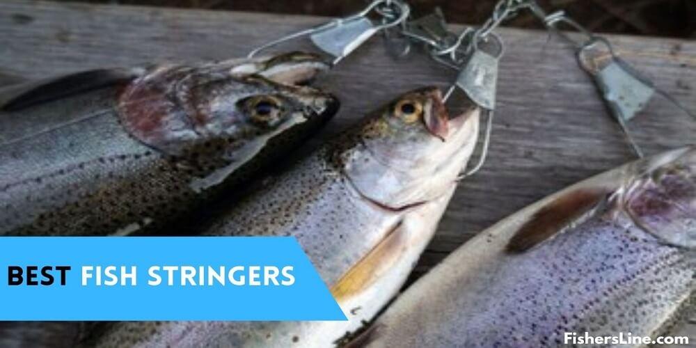 Best fish stringers